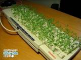 要是太久沒有清理鍵盤,可是會變成這樣!