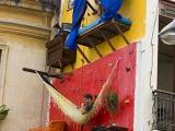 居住在牆壁上的巴西藝術家