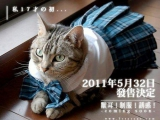 今年發售、最令公貓期待的「制服誘惑」