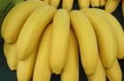 英國妙齡女患怪病! 靠近香蕉恐丟小命