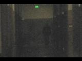 超自然調查組織成功拍到全身鬼影照片