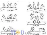 二十隻腳趾在廿分鍾內發生的事....