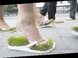 草坪拖鞋! 有趣!