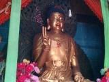第一次見到佛祖用這樣的手勢