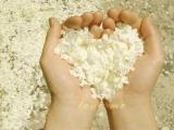 愛情慢性病 -不管是男人或女人,都渴望著一點溫柔