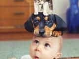 所以說人和動物就是一家人啊!!