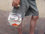 遛魚專用。 Best way to walk your fish.
